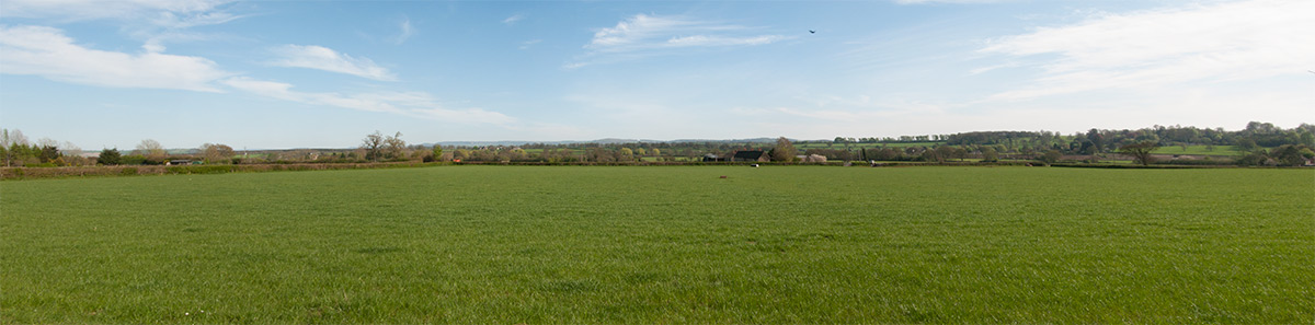 The Green fields of Coker - final battlefield for the Somerset County Council elections